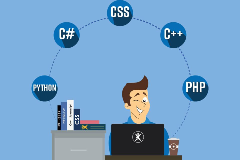 web programlama dilleri nelerdir